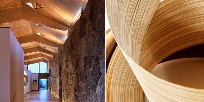 Dise o y chapas de madera forestal maderero - Maderas y chapas ...