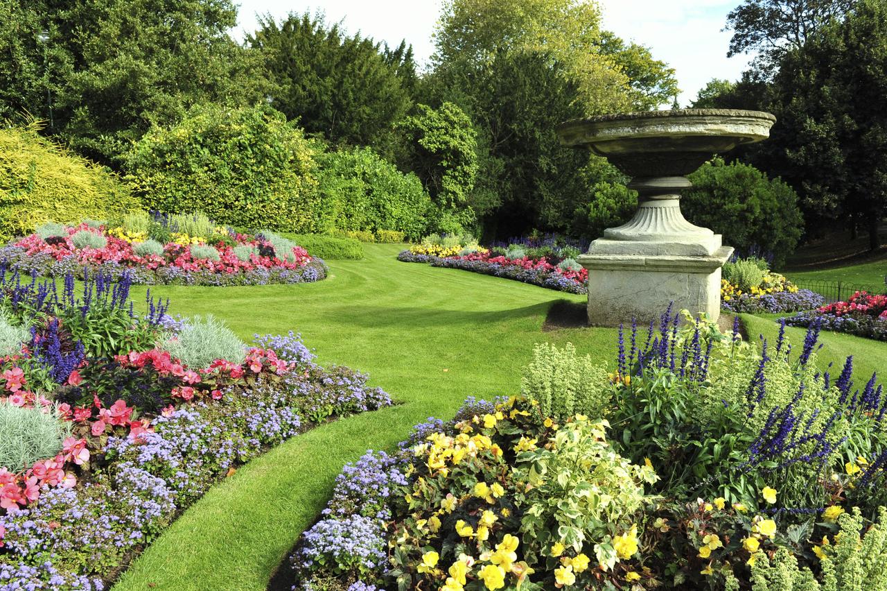 Prueban que los rboles se comunican entre ellos for Jardines grandes modernos