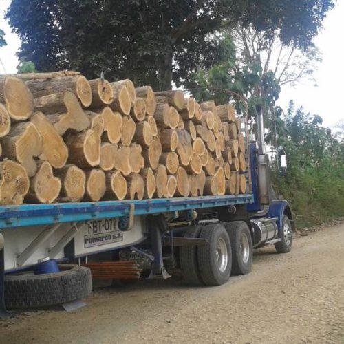 Qu hay de bueno en los muebles de madera de teca - Muebles de madera teca ...