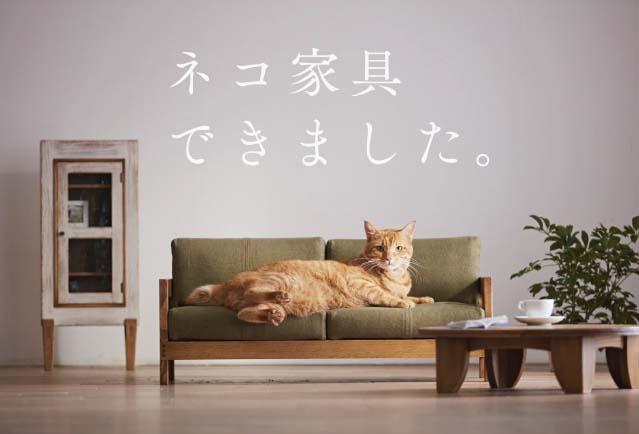 Diseñan mobiliario en madera de pino para gatos - Forestal Maderero