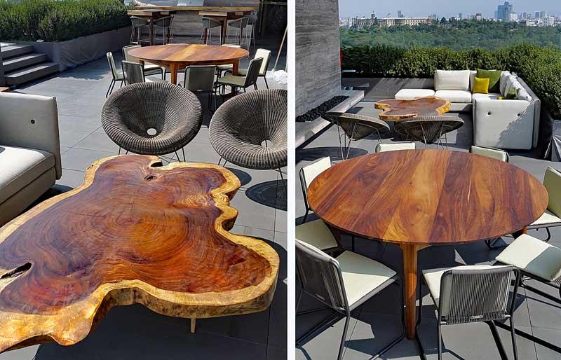Rbol de guanacaste madera de parota forestal maderero for Muebles de exterior mexico