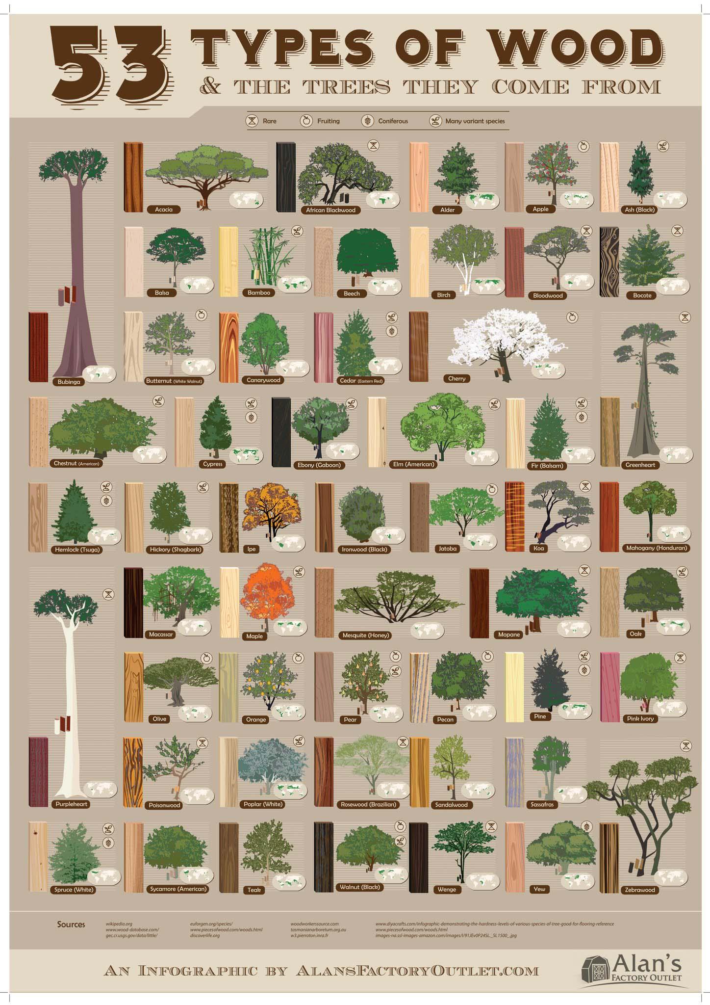 53 tipos de rboles y la madera que producen forestal for Arboles con sus nombres y caracteristicas