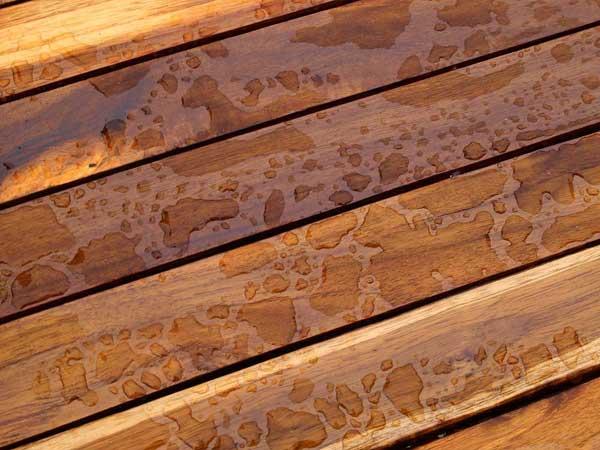 Por qué elegir madera teca para construir un deck? - Forestal Maderero