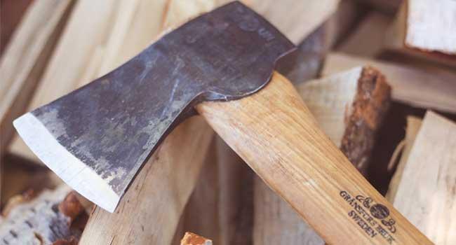 Reutilizaci n de la madera da ada por insectos una nueva tendencia en el reciclaje forestal - Reciclaje de la madera ...